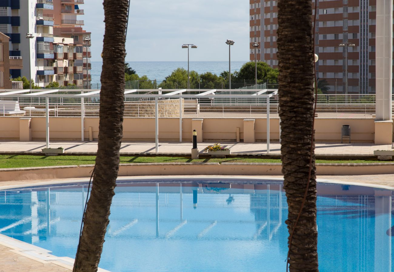 Appartement à Cullera - Appartement de vacances Playa del Raco - Cullera